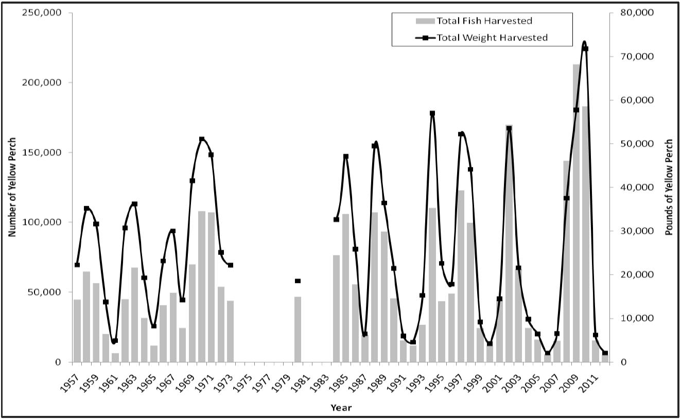 Chart shows DNR data of cyclical patterns of perch populations on Big Spirit Lake.