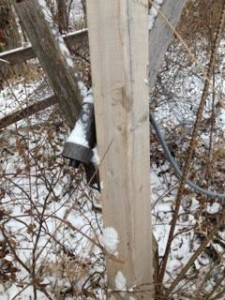 Grunt call mounted on blind stand