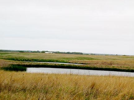 #1-tallgrass-prairie