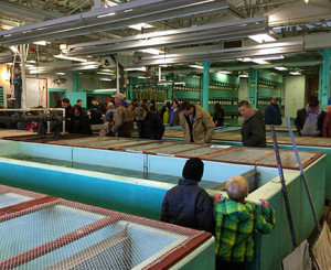 People kept coming to the hatchery all weekend just to see the big walleyes and muskies. (photo by Steve Weisman)