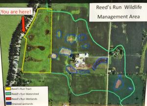 #2c-Reeds Run topography