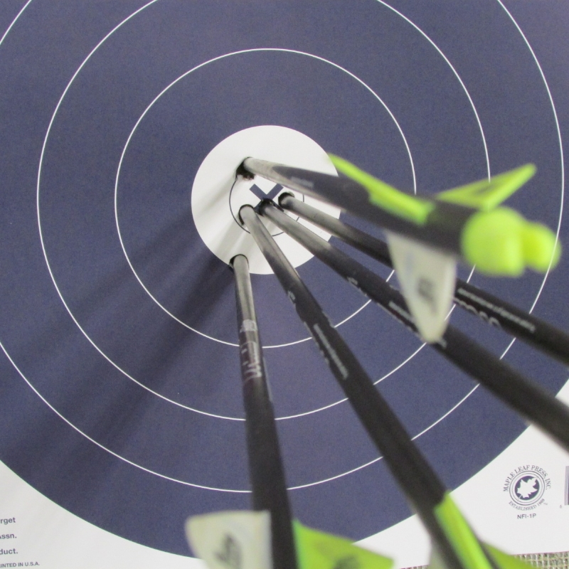 Good condition bow strings are crucial to accuracy & safety